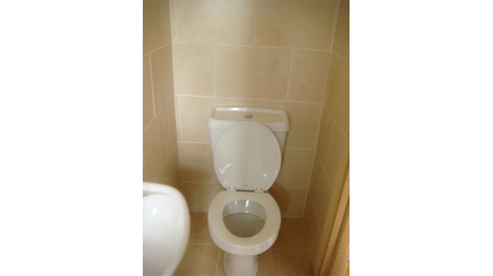 Complete Bathroom Solutions Toilet and sink in ensuite